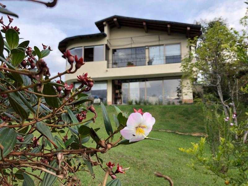 http://pictures.domus.la/inmobiliaria_294/829_9_96400992.jpeg