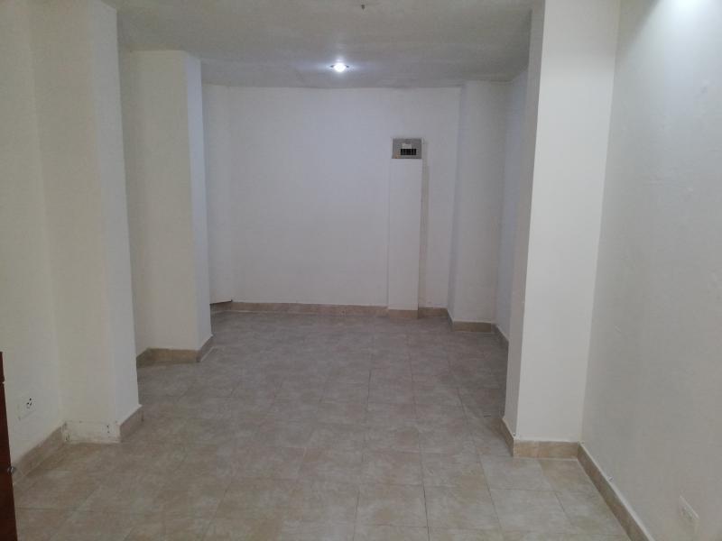 https://pictures.domus.la/inmobiliaria_294/1236_0_34275741.jpg