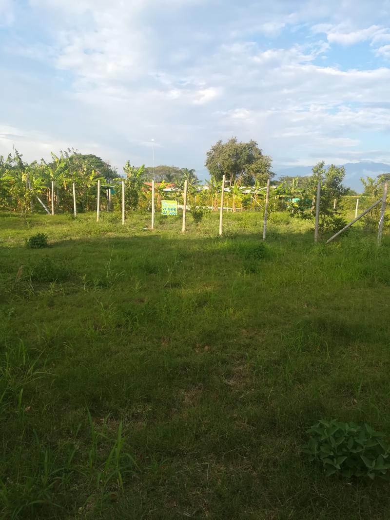 Imagen https://pictures.domus.la/inmobiliaria_301/85254_10_108782709.jpg