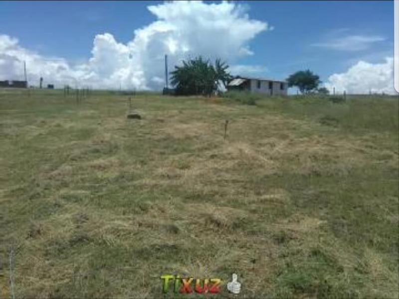 Imagen https://pictures.domus.la/inmobiliaria_301/90207_2_109184656.jpg